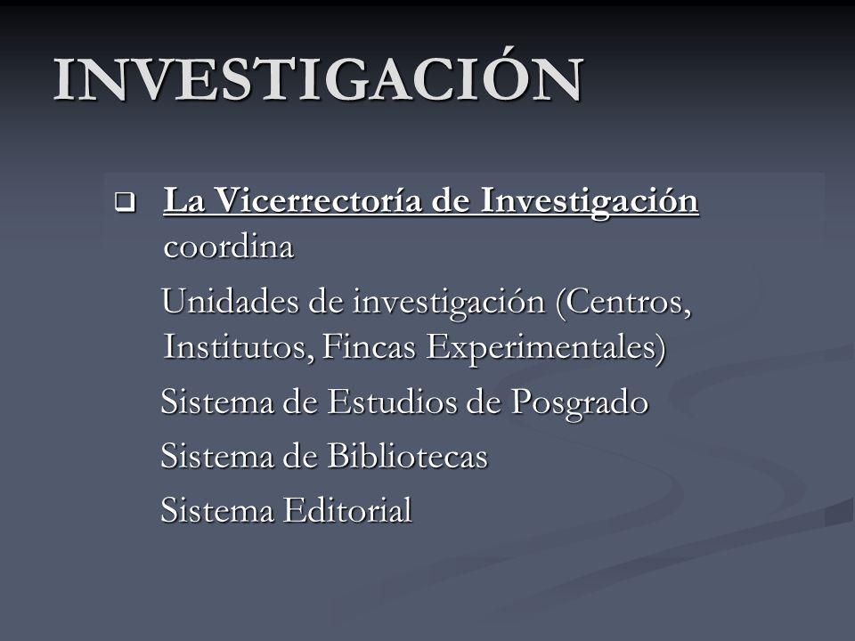 POLÍTICAS DE INVESTIGACIÓN Basadas en Políticas Institucionales: -Promover excelencia académica : estimular investigación -Promover investigaciones: i