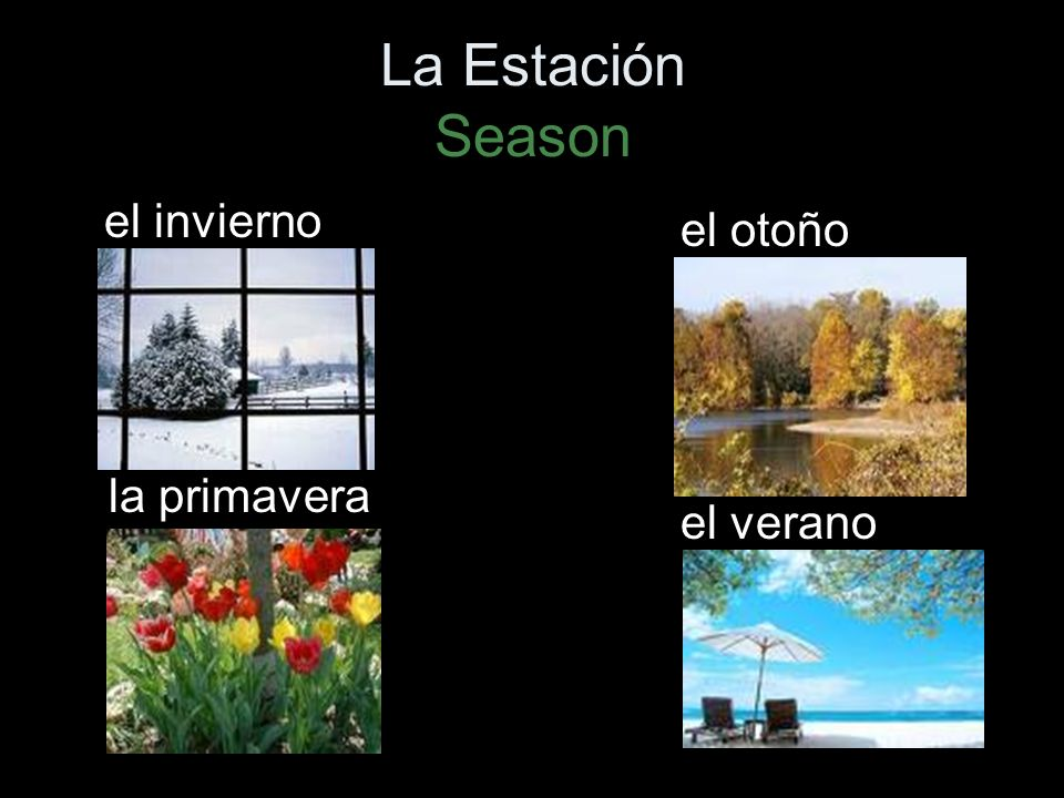 El tiempo Lets talk about the weather.¿Qué tiempo hace?Whats the weather like.