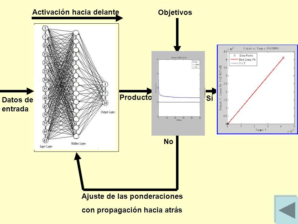Datos de entrada Activación hacia delante Producto Objetivos Si No Ajuste de las ponderaciones con propagación hacia atrás Red Neuronal Artificial Con