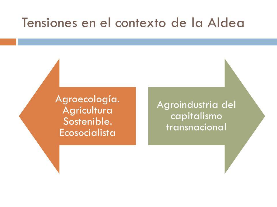 Tensiones en el contexto de la Aldea Agroecología. Agricultura Sostenible. Ecosocialista Agroindustria del capitalismo transnacional
