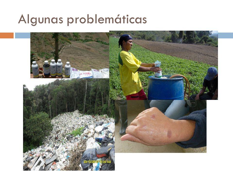 Algunas problemáticas