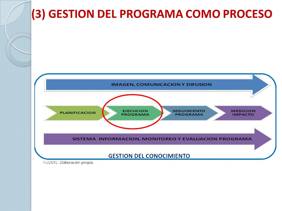 (3) GESTION DEL PROGRAMA COMO PROCESO
