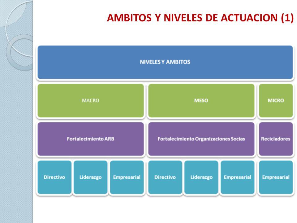 AMBITOS Y NIVELES DE ACTUACION (1)