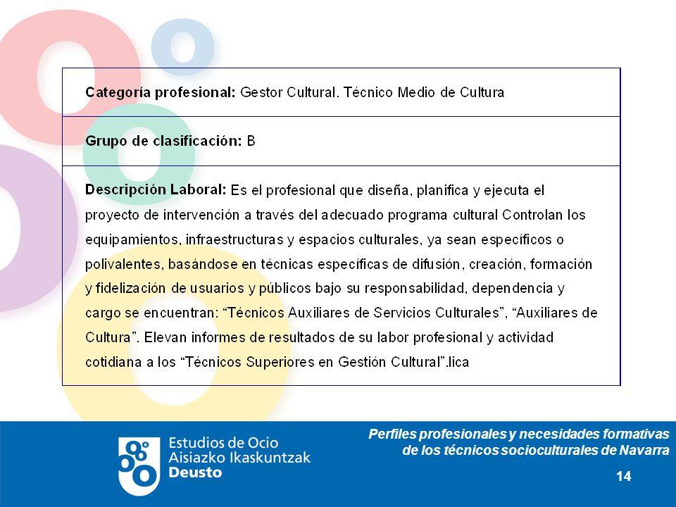 Perfiles profesionales y necesidades formativas de los técnicos socioculturales de Navarra 14