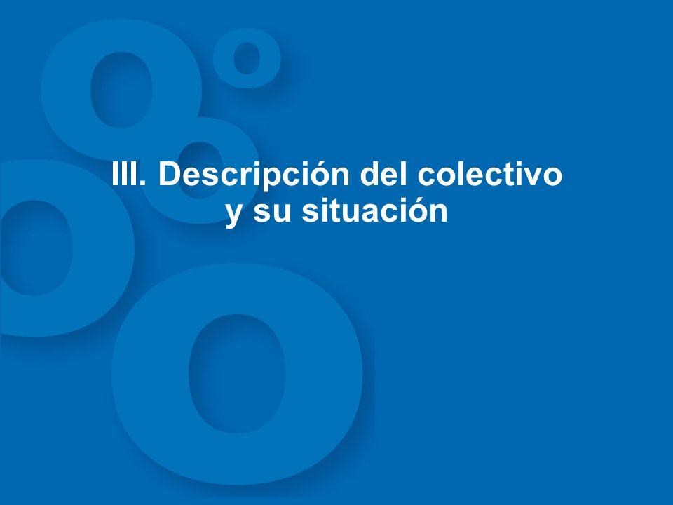 III. Descripción del colectivo y su situación