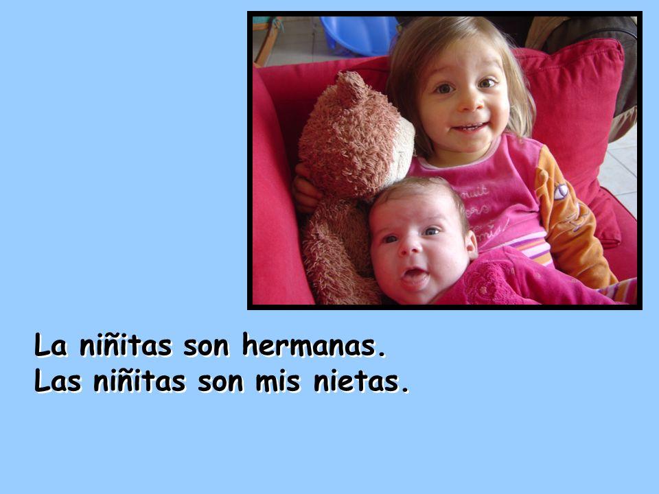 La niñitas son hermanas. Las niñitas son mis nietas. La niñitas son hermanas. Las niñitas son mis nietas.