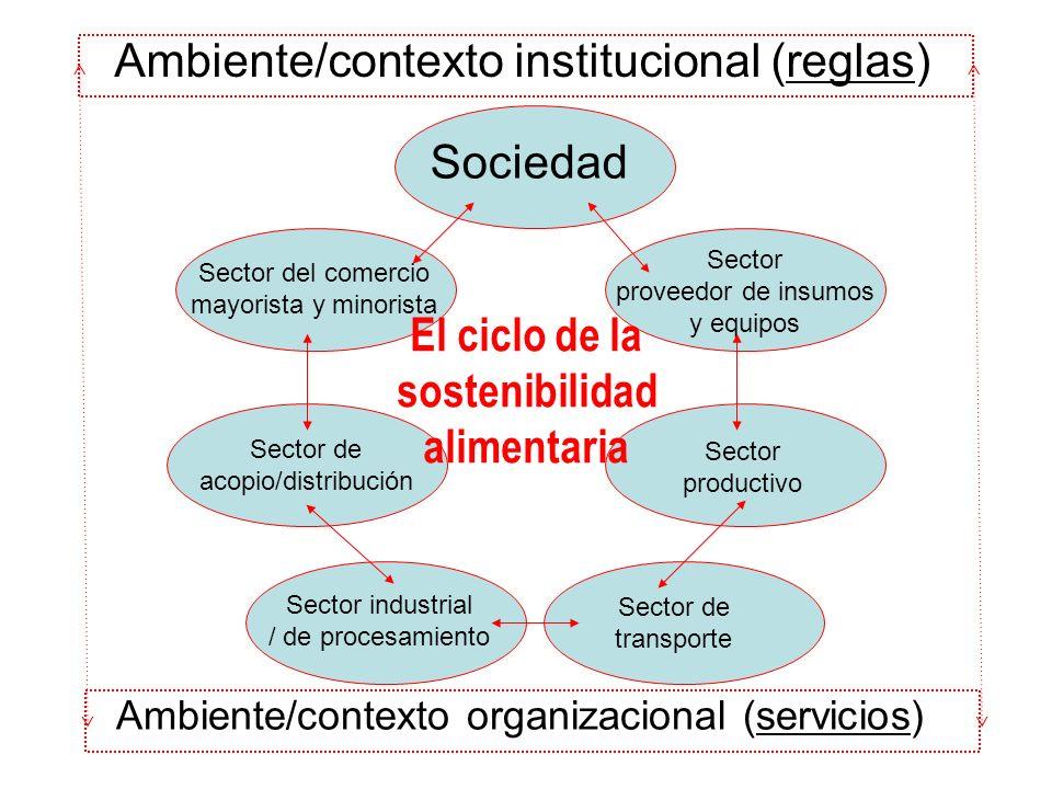 Ambiente/contexto organizacional (servicios) Ambiente/contexto institucional (reglas) Sociedad Sector proveedor de insumos y equipos Sector productivo