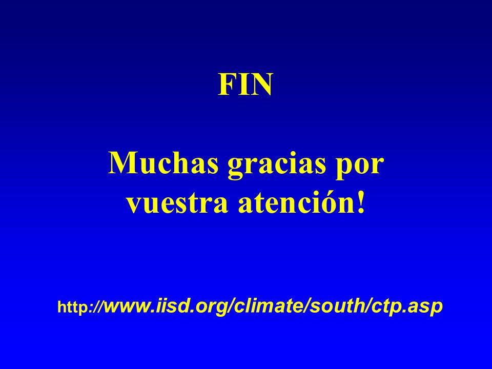 FIN Muchas gracias por vuestra atención! http:// www.iisd.org/climate/south/ctp.asp