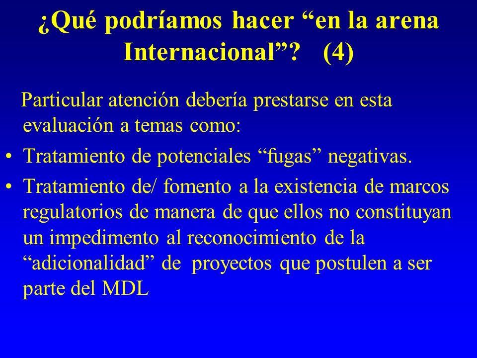 ¿Qué podríamos hacer en la arena Internacional? (4) Particular atención debería prestarse en esta evaluación a temas como: Tratamiento de potenciales