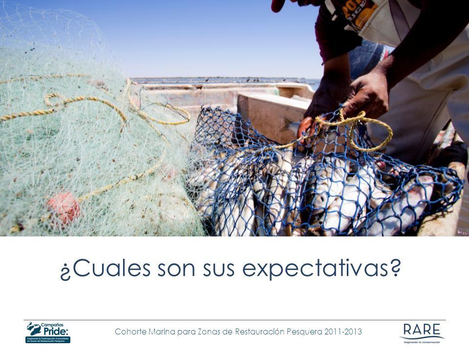 Cohorte Marina para Zonas de Restauración Pesquera 2011-2013 ¿Cuales son sus expectativas?