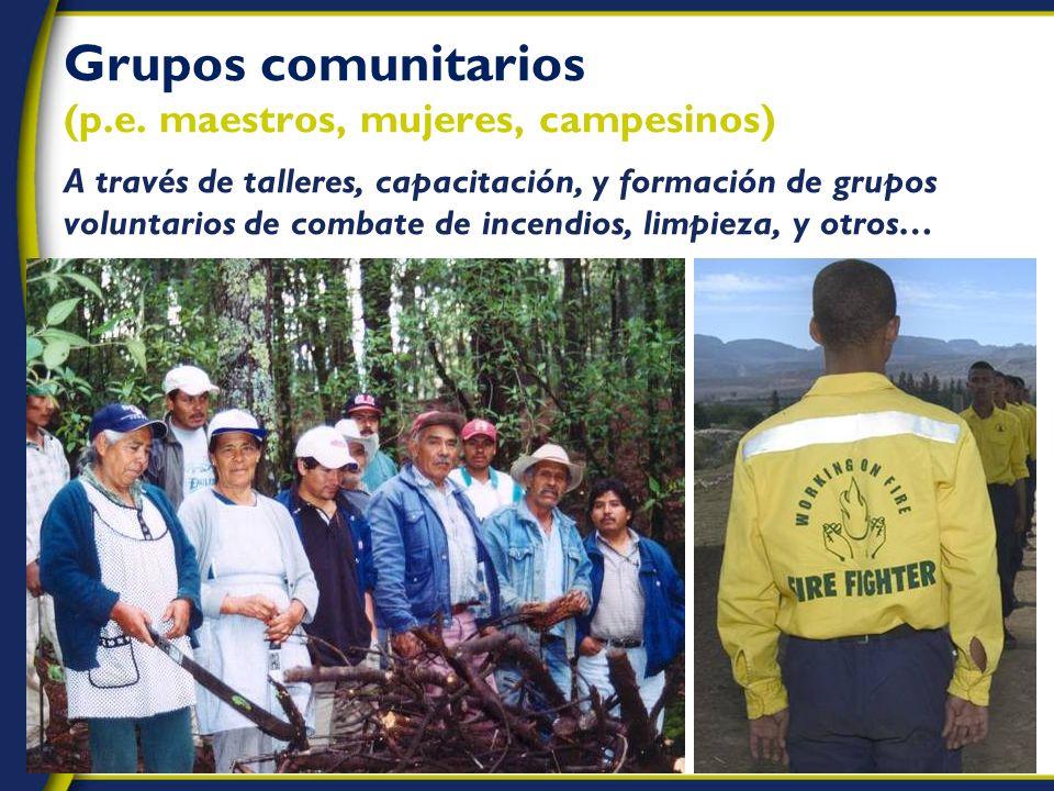 Grupos comunitarios (p.e.