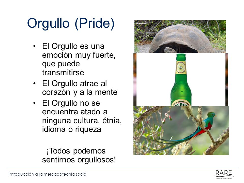 Introducción a la mercadotecnia social Orgullo (Pride) El Orgullo es una emoción muy fuerte, que puede transmitirse El Orgullo atrae al corazón y a la