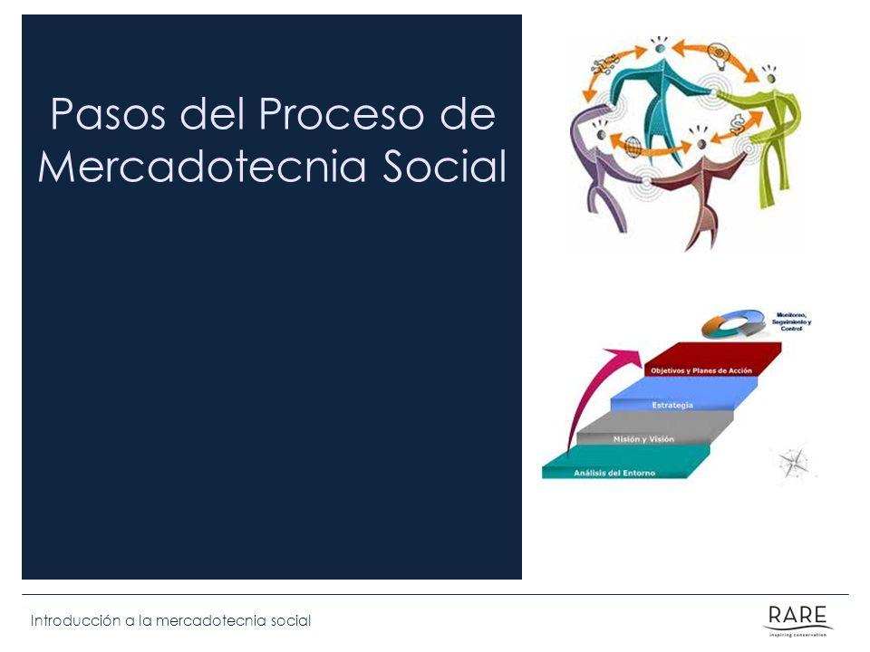 Introducción a la mercadotecnia social Pasos del Proceso de Mercadotecnia Social