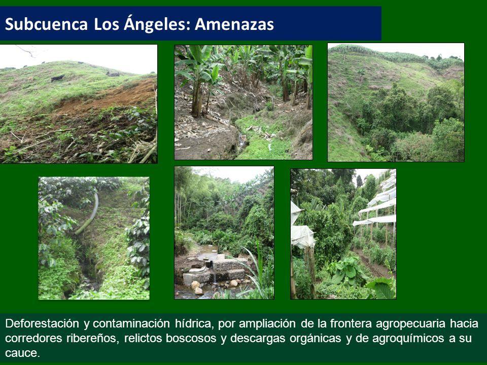 Subcuenca Los Ángeles: Amenazas Deforestación y contaminación hídrica, por ampliación de la frontera agropecuaria hacia corredores ribereños, relictos boscosos y descargas orgánicas y de agroquímicos a su cauce.