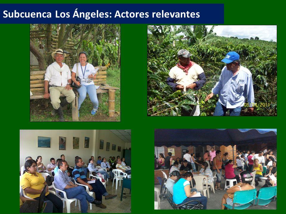 Subcuenca Los Ángeles: Actores relevantes