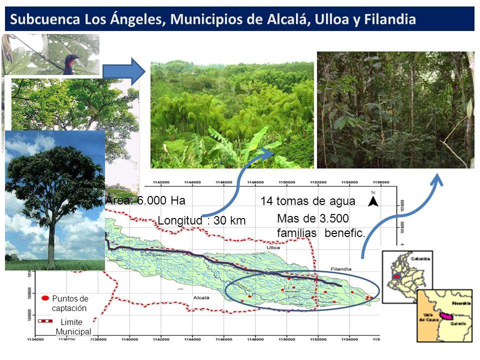 Puntos de captación Limite Municipal municipal Subcuenca Los Ángeles, Municipios de Alcalá, Ulloa y Filandia Longitud : 30 km Área: 6.000 Ha 14 tomas de agua Mas de 3.500 familias benefic.