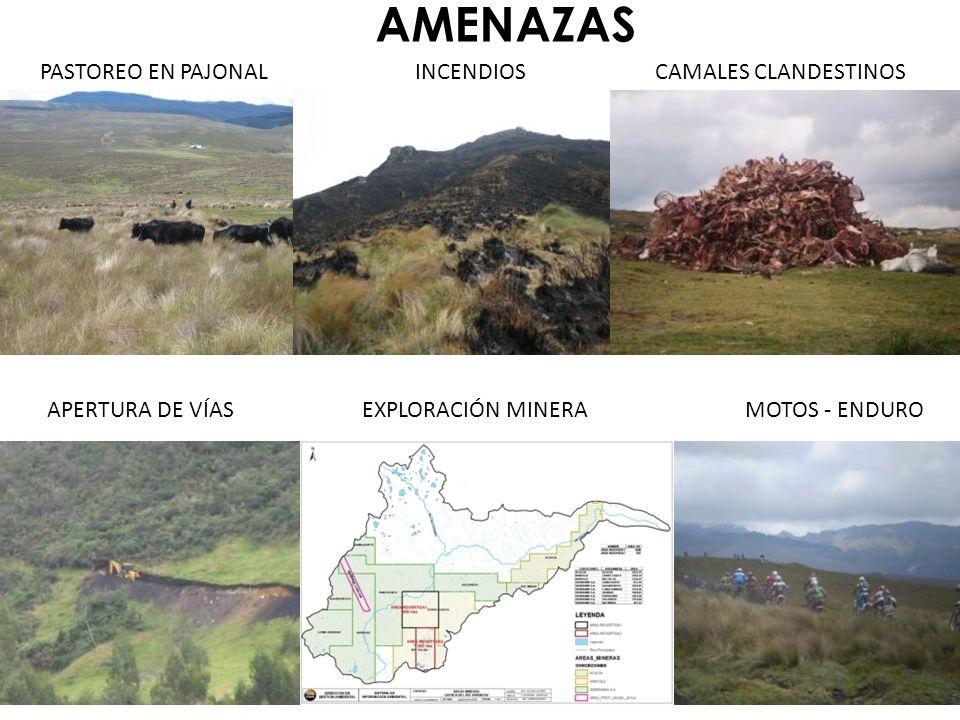 RESPONSABLE DE LA AMENAZA Y SOLUCIÓN 1.COMUNIDAD DE SOLDADOS 2.