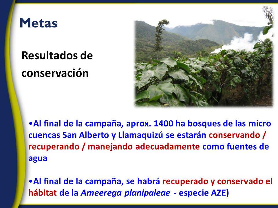 Metas Al final de la campaña, aprox. 1400 ha bosques de las micro cuencas San Alberto y Llamaquizú se estarán conservando / recuperando / manejando ad