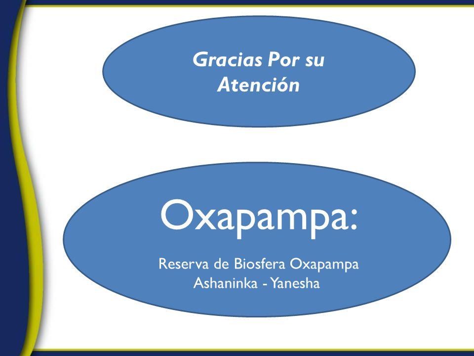 Gracias Por su Atención Oxapampa: Reserva de Biosfera Oxapampa Ashaninka - Yanesha