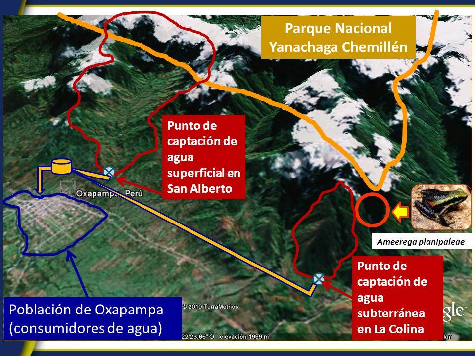 Población de Oxapampa (consumidores de agua) Parque Nacional Yanachaga Chemillén Punto de captación de agua superficial en San Alberto Ameerega planip