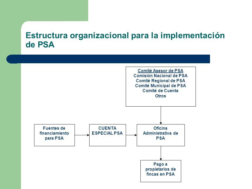 Órganos para la implementación de PSA Comisión Nacional de Pago por Servicios Ambientales Comités regionales de PSA Comités municipales para la representación de la sociedad civil e institucional