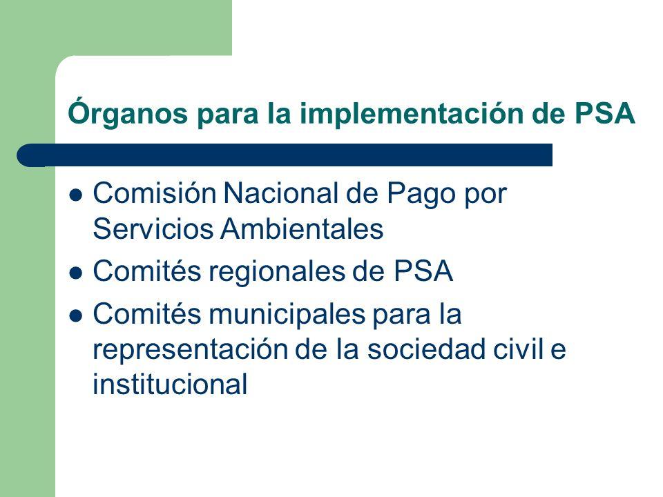 Principios básicos de la estructura Organización Representatividad Consenso Autosostenibilidad Coordinación en todos los niveles y Liderazgo