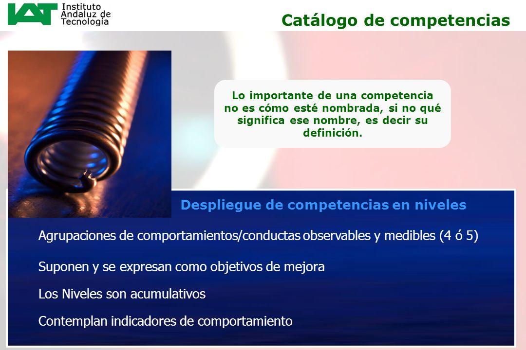 11 Despliegue de competencias en niveles Catálogo de competencias Lo importante de una competencia no es cómo esté nombrada, si no qué significa ese n