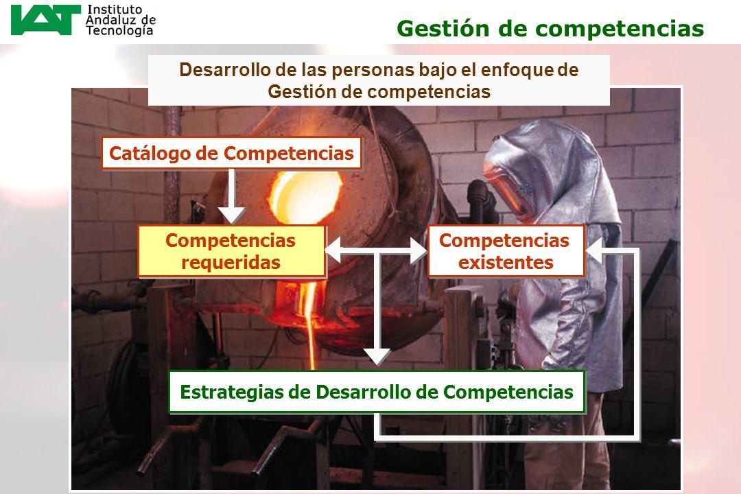 13 Desarrollo de las personas bajo el enfoque de Gestión de competencias Catálogo de Competencias Competencias requeridas Competencias requeridas Comp