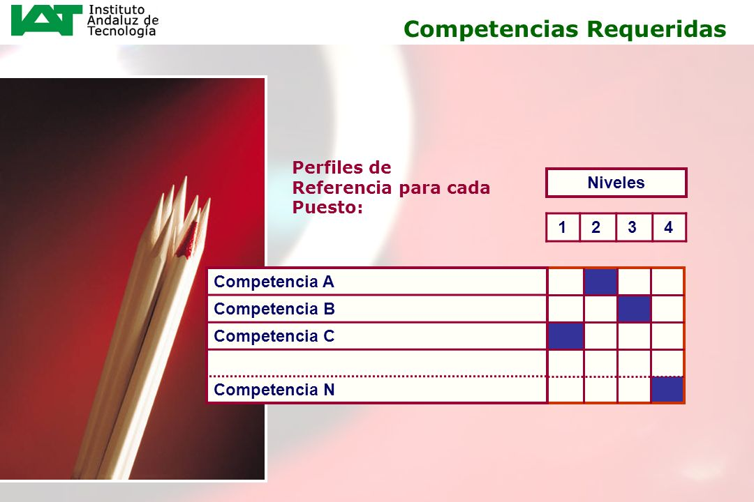 15 Perfiles de Referencia para cada Puesto: 1 2 3 4 Niveles Competencias Requeridas Competencia A Competencia B Competencia C Competencia N