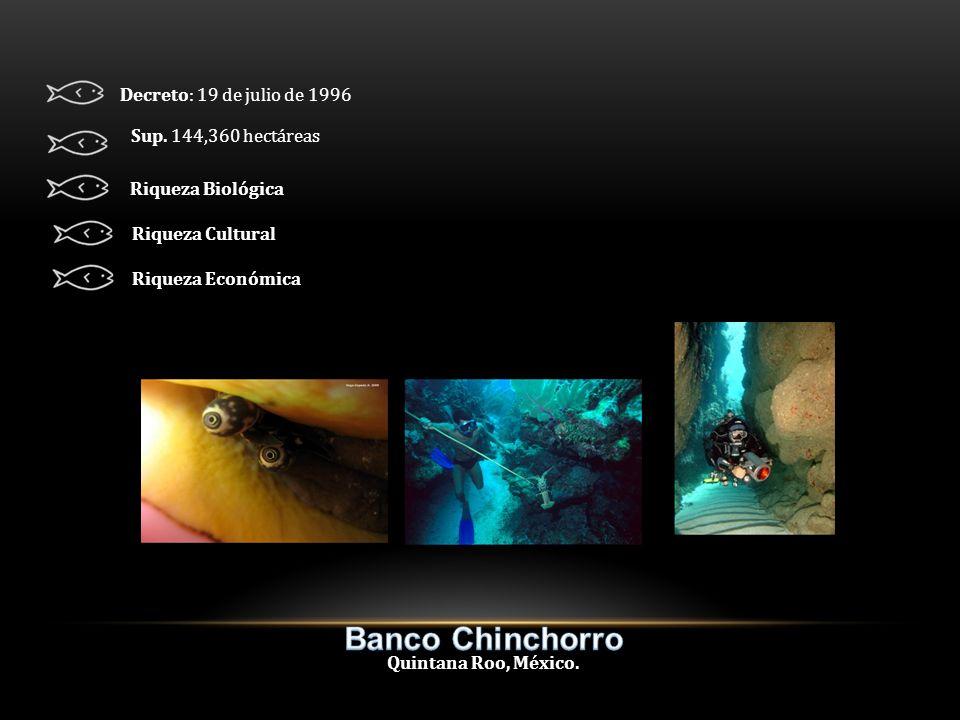 Quintana Roo, México. Decreto: 19 de julio de 1996 Sup.