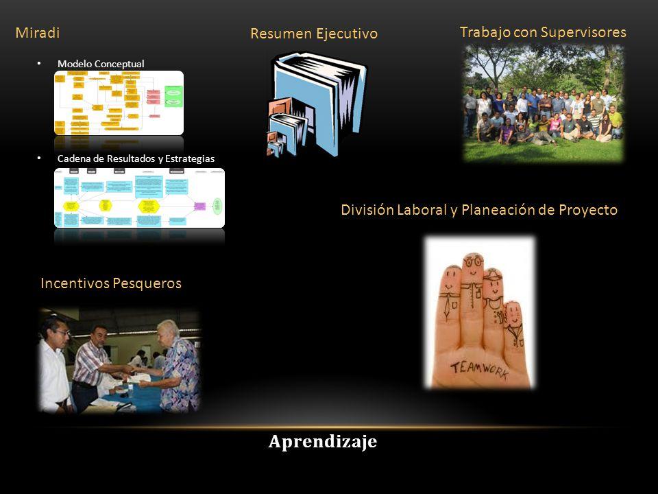 Resumen Ejecutivo Miradi Modelo Conceptual Cadena de Resultados y Estrategias Trabajo con Supervisores Incentivos Pesqueros División Laboral y Planeación de Proyecto Aprendizaje