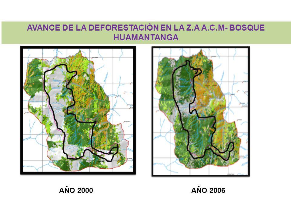 RA: LA DEFORESTACIÓN, CAUSADA POR AGRICULTORES Y GANADEROS CC: PROPIETARIOS DESARROLLAN PRÁCTICAS AGRÍCOLAS Y GANADERAS SOSTENIBLES Y USUARIOS CONTRIBUYEN AL ARA Foto: Saldaña k.