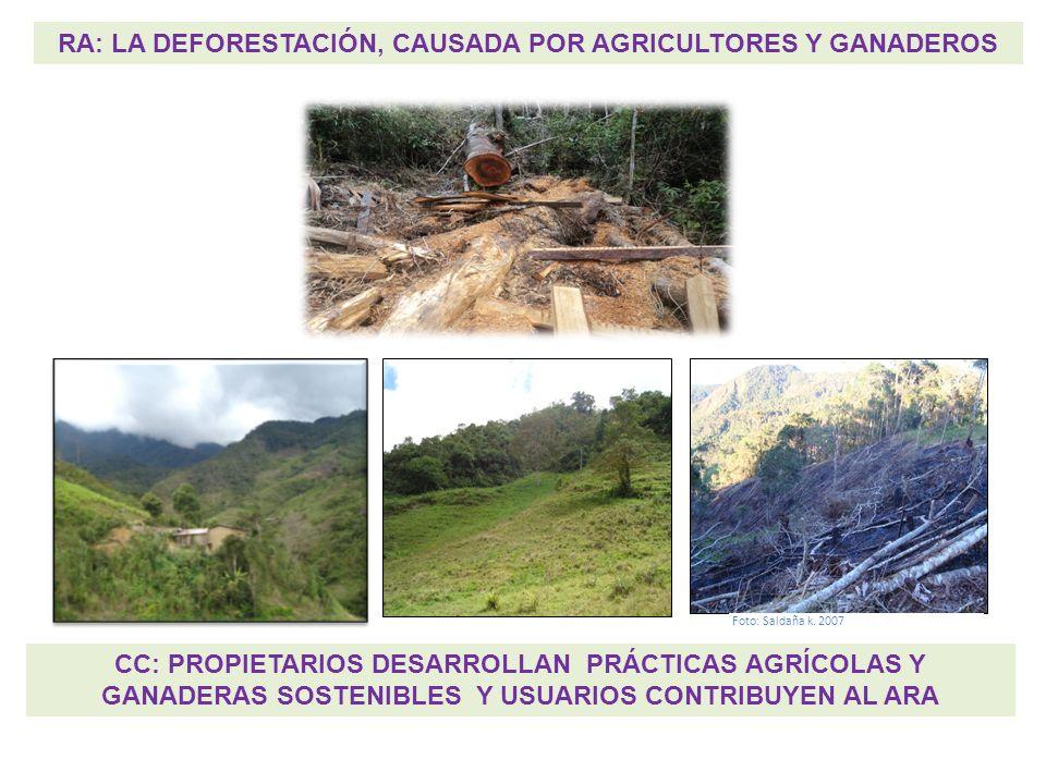 RA: LA DEFORESTACIÓN, CAUSADA POR AGRICULTORES Y GANADEROS CC: PROPIETARIOS DESARROLLAN PRÁCTICAS AGRÍCOLAS Y GANADERAS SOSTENIBLES Y USUARIOS CONTRIB