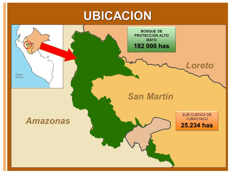 Amazonas Loreto San Martín Océano Pacífico PERÚ SUB CUENCA DE YURACYACU 25.234 has SUB CUENCA DE YURACYACU 25.234 has BOSQUE DE PROTECCIÓN ALTO MAYO 1