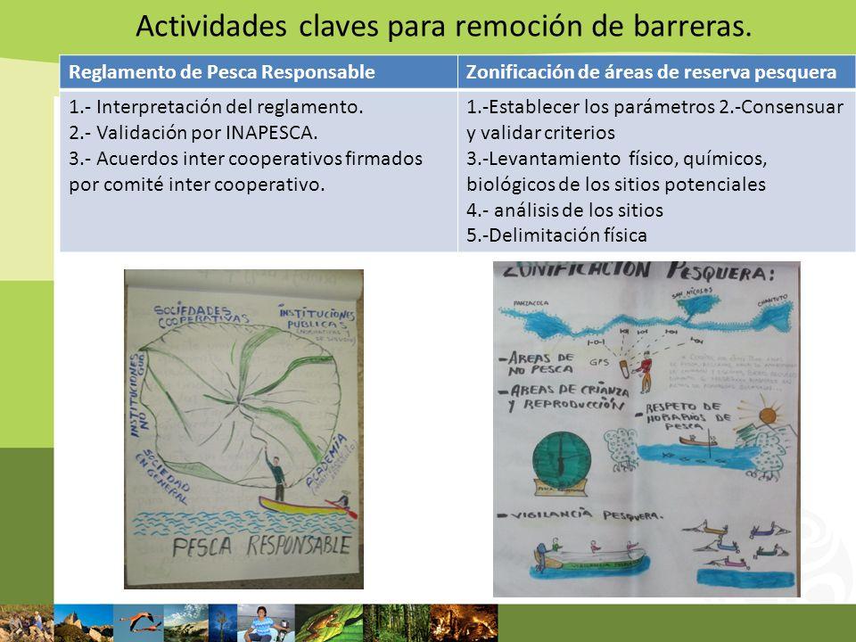 Actividades claves para remoción de barreras. Reglamento de Pesca ResponsableZonificación de áreas de reserva pesquera 1.- Interpretación del reglamen