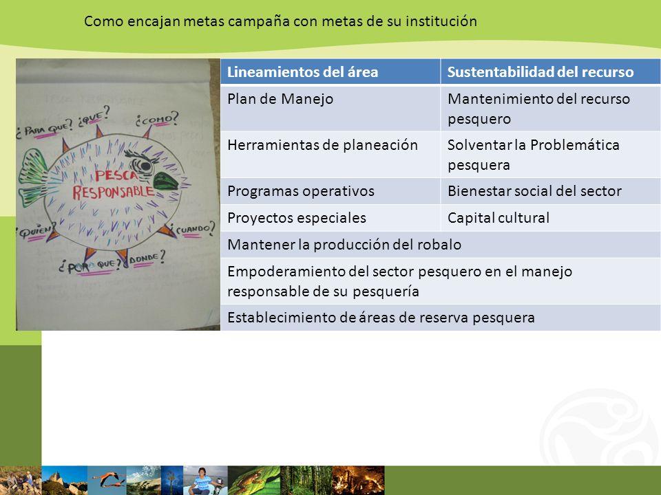 Como encajan metas campaña con metas de su institución Lineamientos del áreaSustentabilidad del recurso Plan de ManejoMantenimiento del recurso pesque