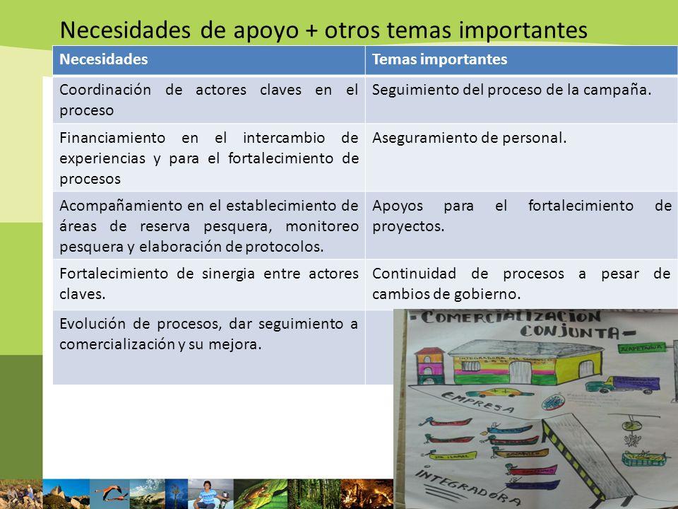 Necesidades de apoyo + otros temas importantes NecesidadesTemas importantes Coordinación de actores claves en el proceso Seguimiento del proceso de la