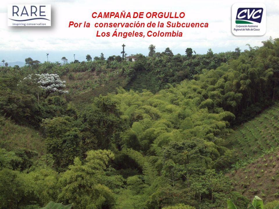 Bocatoma Límite municipal SUBCUENCA LOS ÁNGELES Longitud : 30 km Área Total : 6.000 Ha 14 tomas de agua Mas de 3.500 familias benefic.