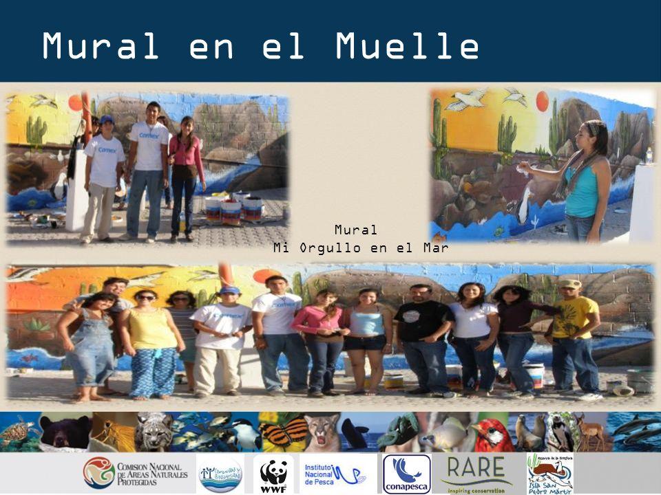 Actividades de Campaña Voluntarios Apoyo Club de ecología Teatro Baúl Educativo