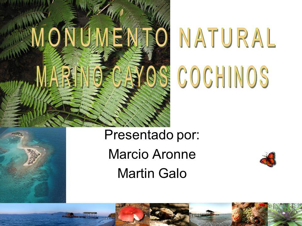 Presentado por: Marcio Aronne Martin Galo
