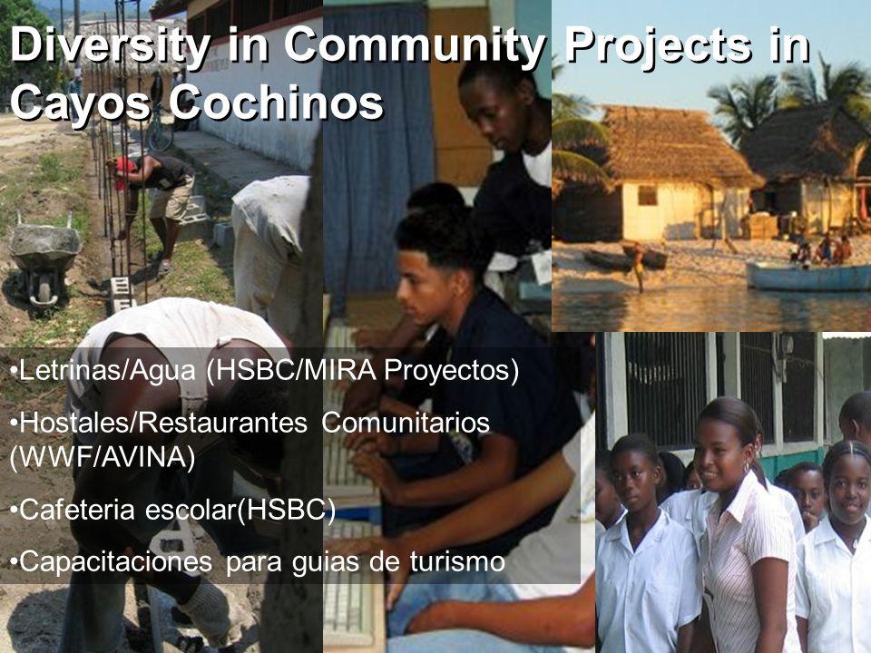 Letrinas/Agua (HSBC/MIRA Proyectos) Hostales/Restaurantes Comunitarios (WWF/AVINA) Cafeteria escolar(HSBC) Capacitaciones para guias de turismo Divers