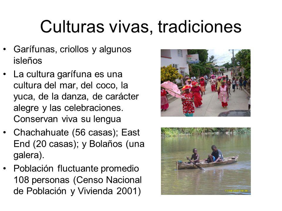 Culturas vivas, tradiciones Garífunas, criollos y algunos isleños La cultura garífuna es una cultura del mar, del coco, la yuca, de la danza, de carác