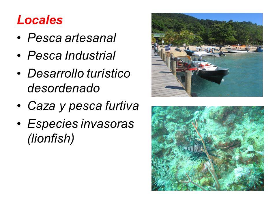 Locales Pesca artesanal Pesca Industrial Desarrollo turístico desordenado Caza y pesca furtiva Especies invasoras (lionfish)