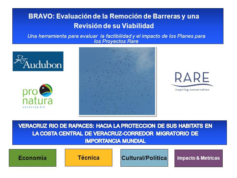 Una herramienta para evaluar la factibilidad y el impacto de los Planes para los Proyectos Rare BRAVO: Evaluación de la Remoción de Barreras y una Revisión de su Viabilidad Economía Técnica Cultural/Política Impacto & Metricas