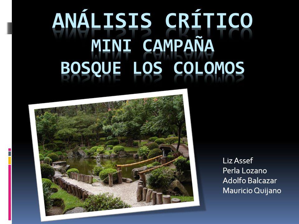 Liz Assef Perla Lozano Adolfo Balcazar Mauricio Quijano