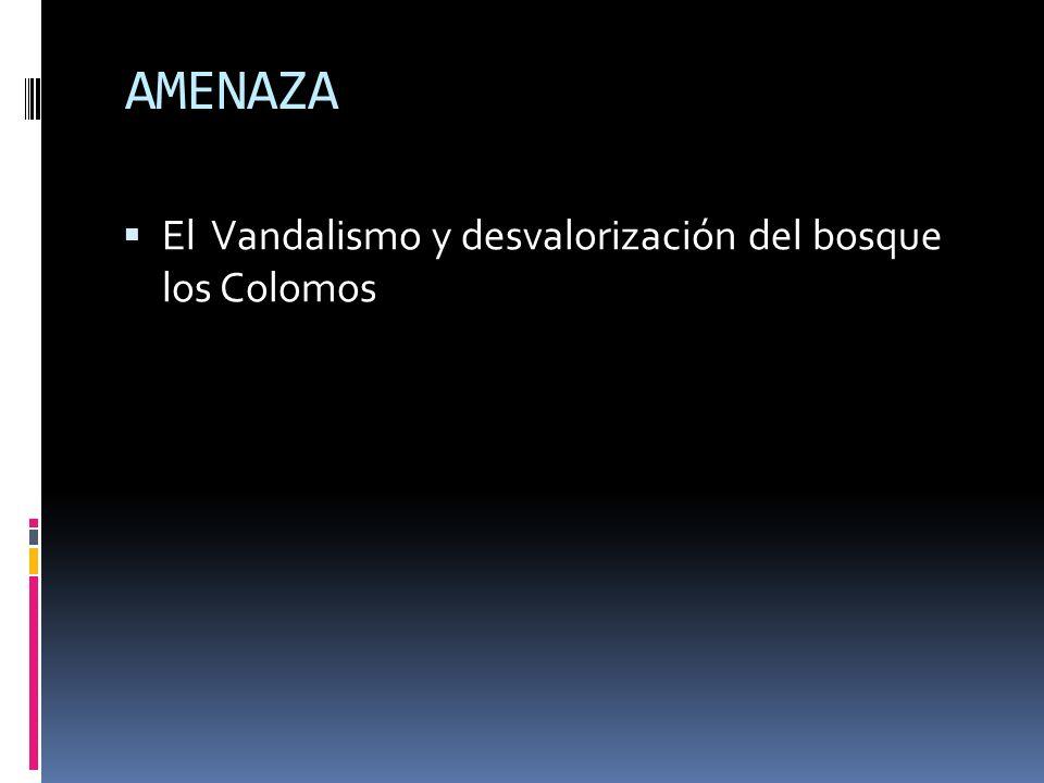 AMENAZA El Vandalismo y desvalorización del bosque los Colomos