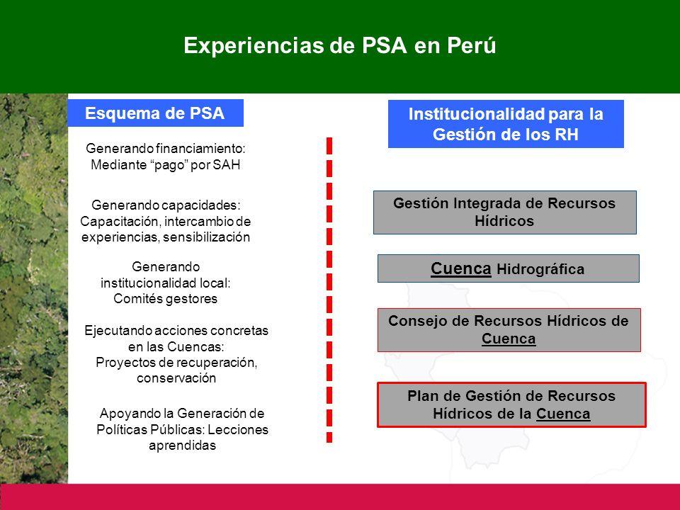 Experiencias de PSA en Perú Esquema de PSA Institucionalidad para la Gestión de los RH Generando financiamiento: Mediante pago por SAH Generando capacidades: Capacitación, intercambio de experiencias, sensibilización Generando institucionalidad local: Comités gestores Ejecutando acciones concretas en las Cuencas: Proyectos de recuperación, conservación Apoyando la Generación de Políticas Públicas: Lecciones aprendidas Plan de Gestión de Recursos Hídricos de la Cuenca Gestión Integrada de Recursos Hídricos Cuenca Hidrográfica Consejo de Recursos Hídricos de Cuenca