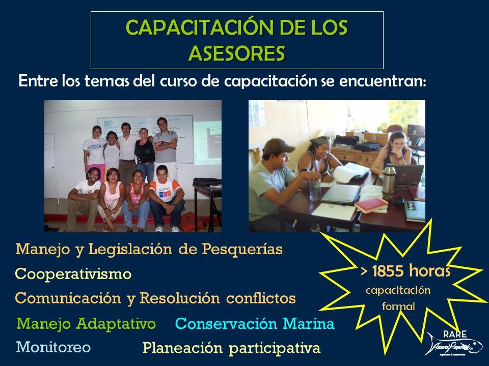 CAPACITACIÓN DE LOS ASESORES The subjects in our training course included: Manejo y Legislación de Pesquerías Planeación participativa Monitoreo Comun