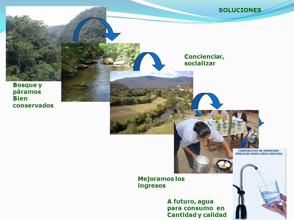 SOLUCIONES Bosque y páramos Bien conservados Mejoramos los ingresos A futuro, agua para consumo en Cantidad y calidad Concienciar, socializar