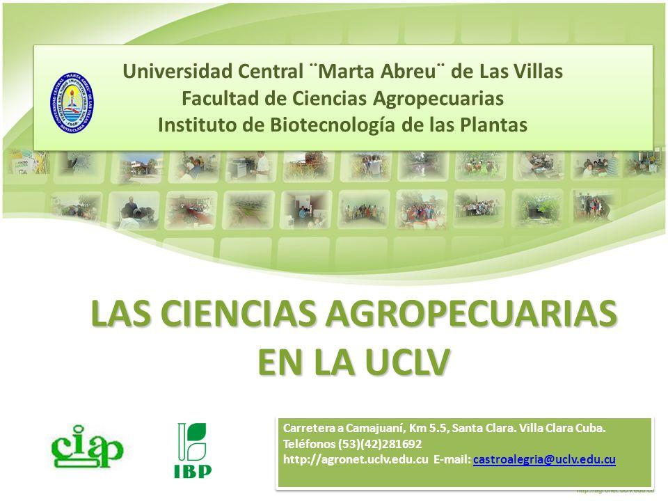 Tecnología de producción de ensilajes de alta calidad Parámetros del valor nutritivo y de la calidad del ensilaje de algunos recursos forrajeros disponibles en Cuba.